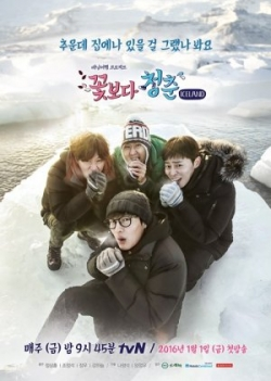 Youth Over Flowers: Iceland 2016
